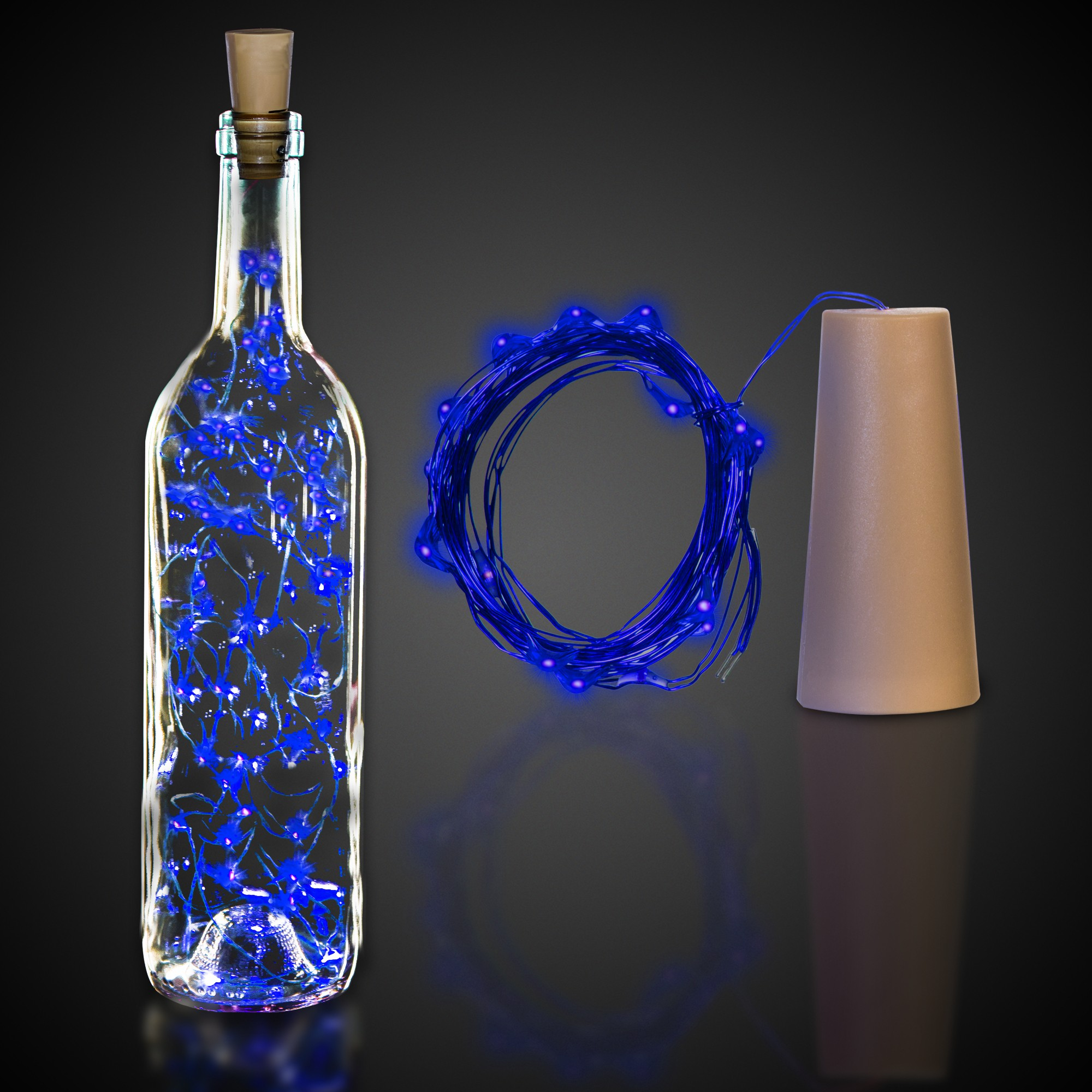 Blue Cork String Light Set