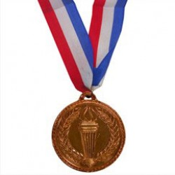 Bronze Award Medals